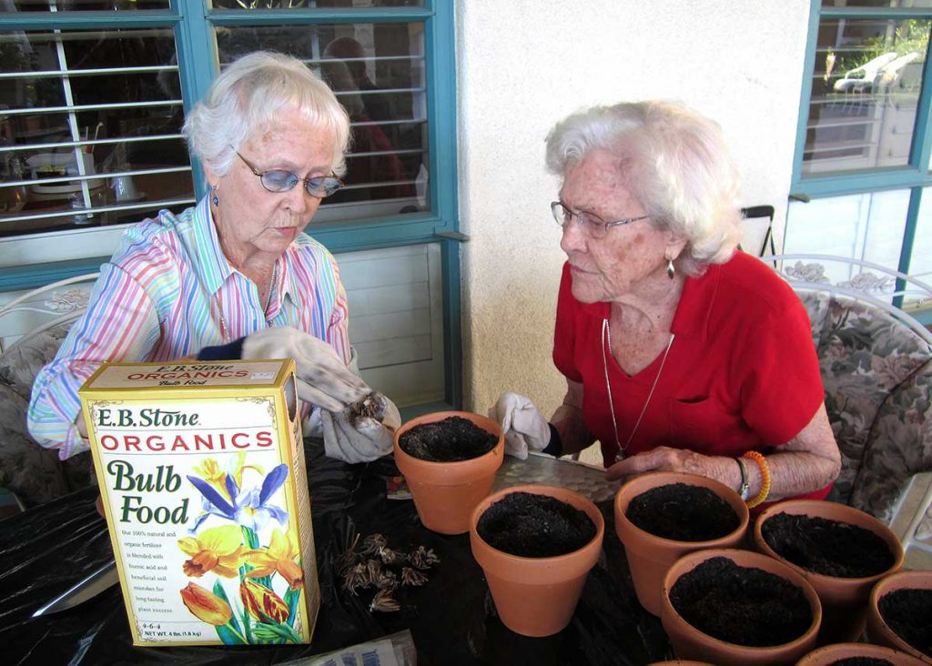 Two senior ladies gardening together at Wood Glen Hall Assisted Living