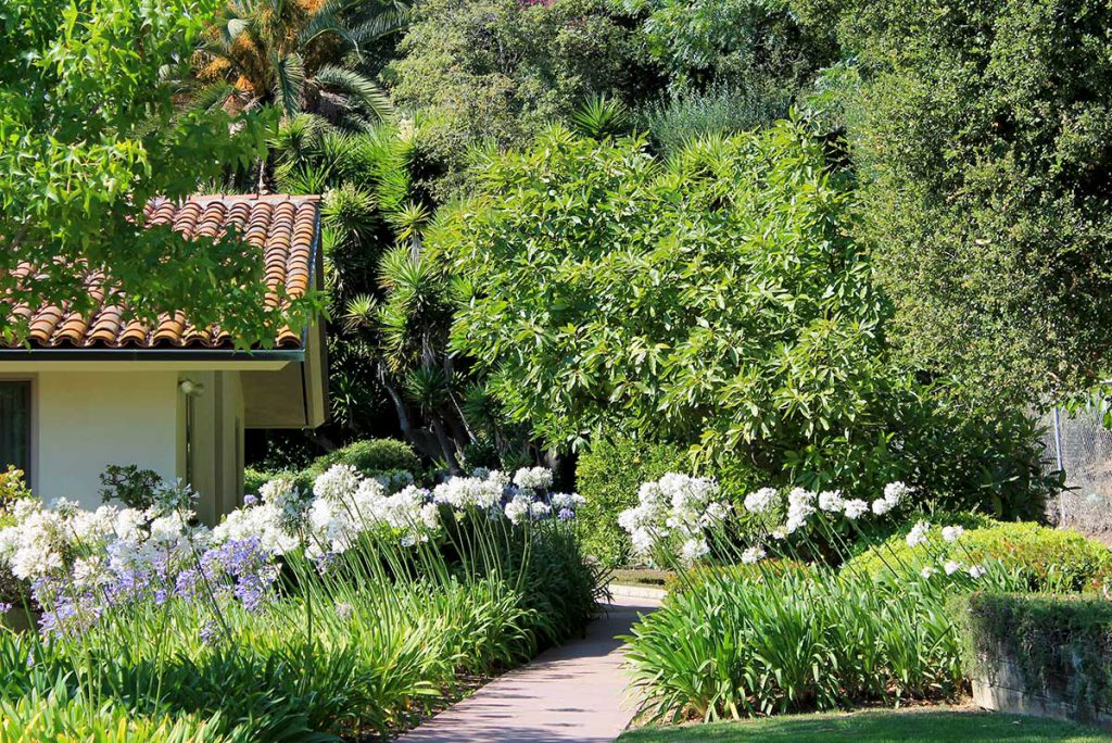Walking path through the garden at Wood Glen Hall Assisted Living in Santa Barbara